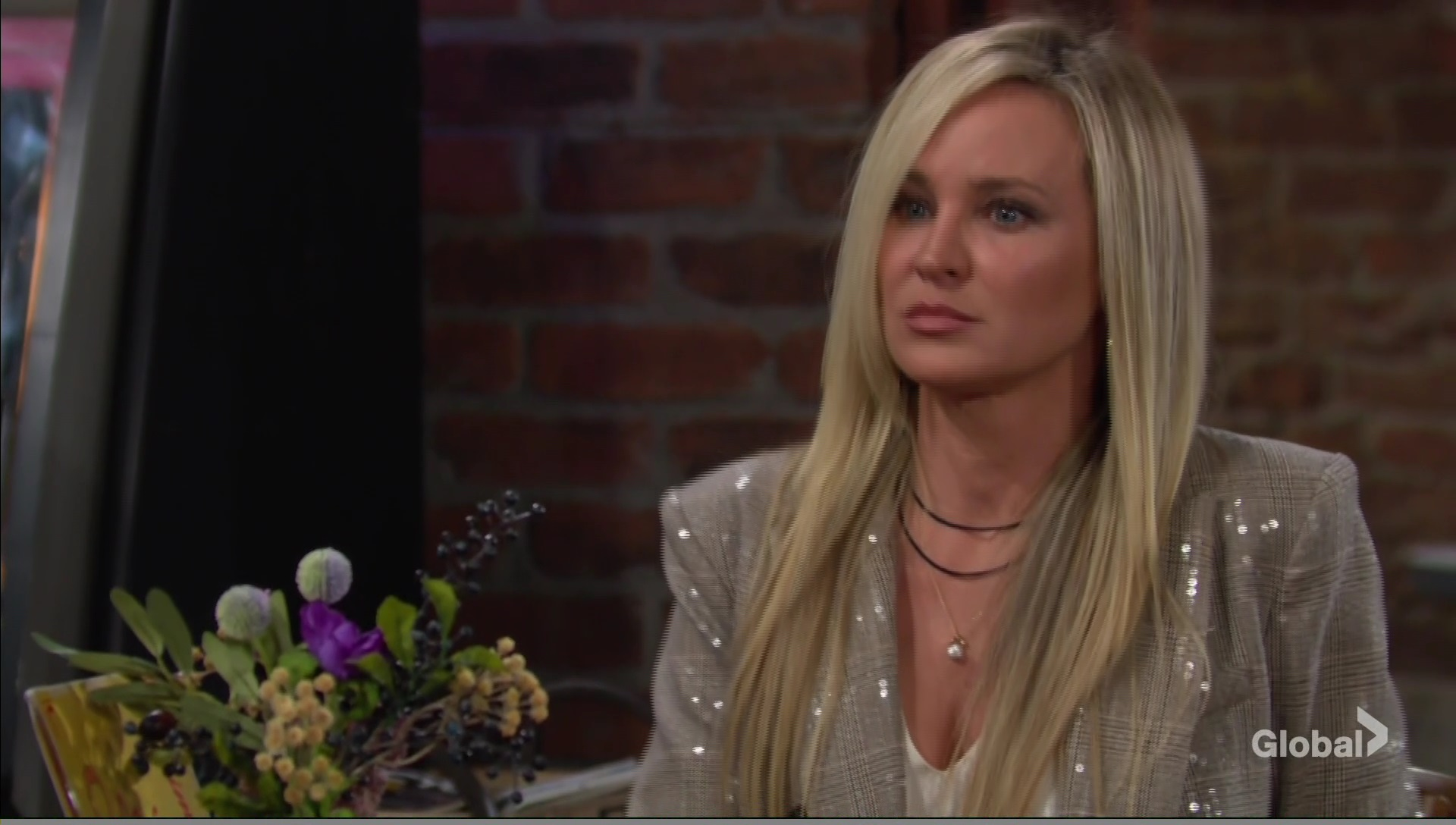 sharon gorgeous hair young restless