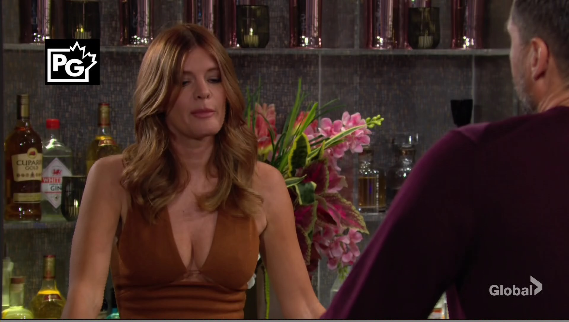 phyllis nick brown dress young and restless
